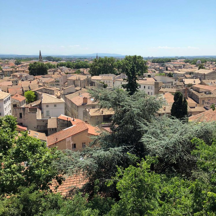 Zicht over de daken van Avignon